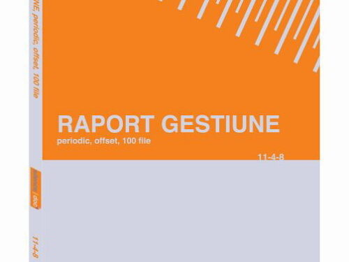 raport gestiune periodic