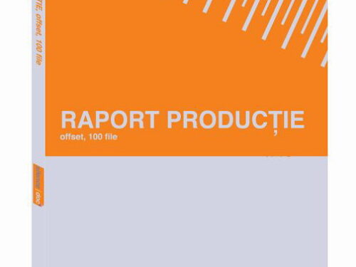 Raport productie